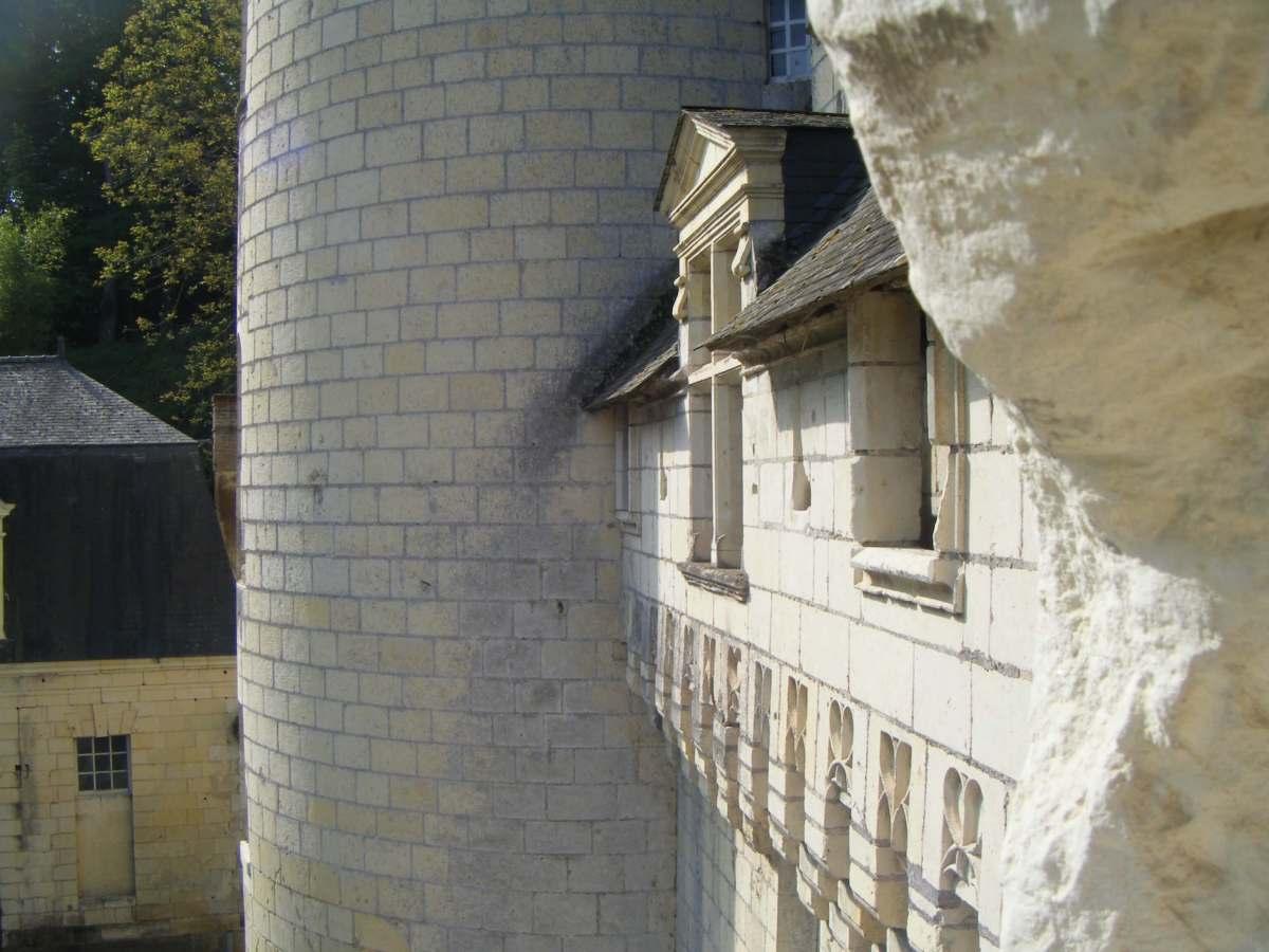 Mes Châteaux de laLoire